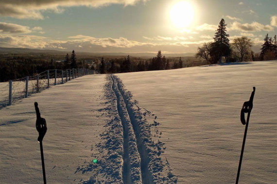 Cape Breton Nordic/Seaview Golf Club Ski Trails