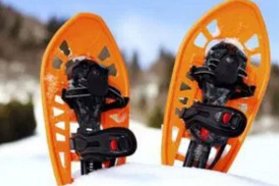 Dennison Road Multi-use Trail Guided Snowshoe Hikes