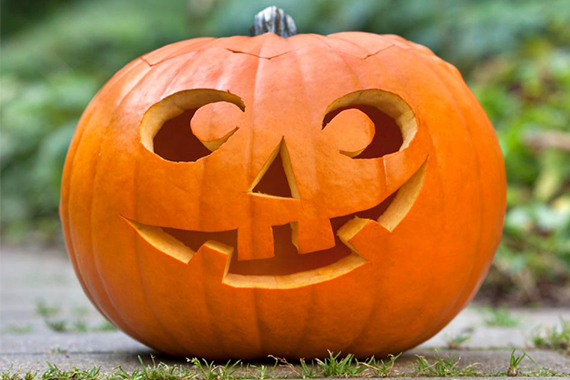 Free Pumpkin Carving and Hiking at Cape Breton Highlands National Park
