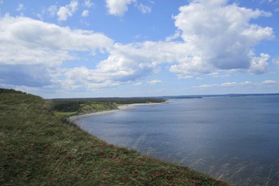 Gull Cove Trail