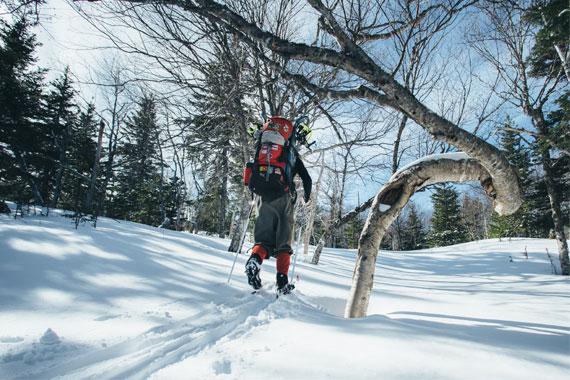 MacLean Road Guided Snowshoe Hike