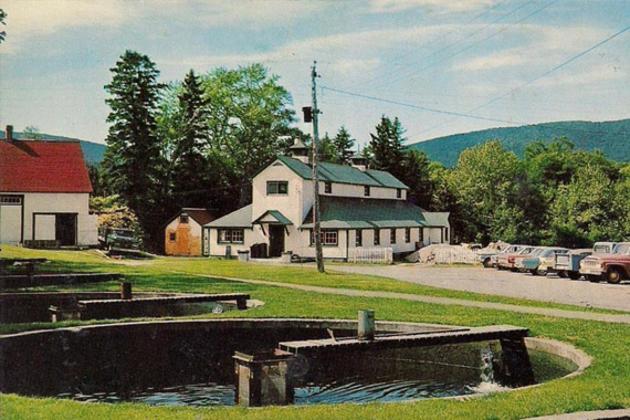 Margaree Fish Hatchery