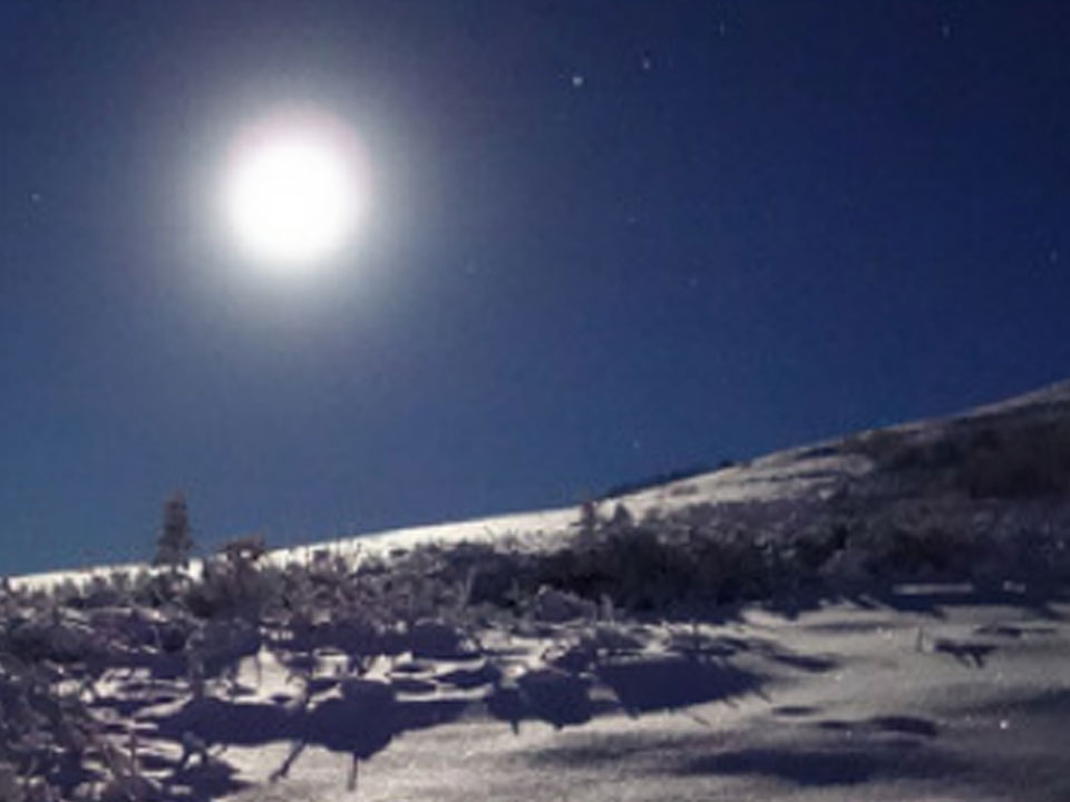 Moonlight Snowshoe Jaunt – Ski Ben Eoin