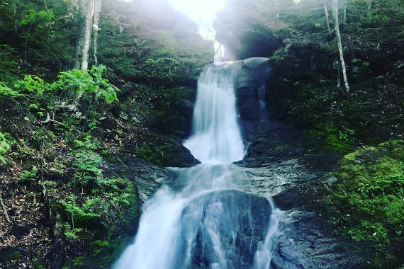 Myles Doyle Falls