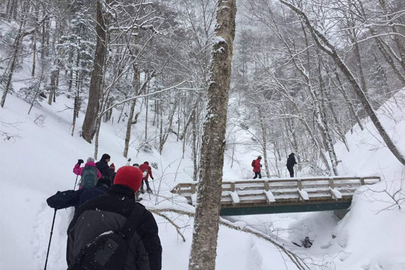 Snowshoe Guided Hike – Uisge Ban Falls