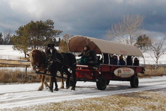 Taste of Winter – Wagon Rides at the Fortress of Louisbourg