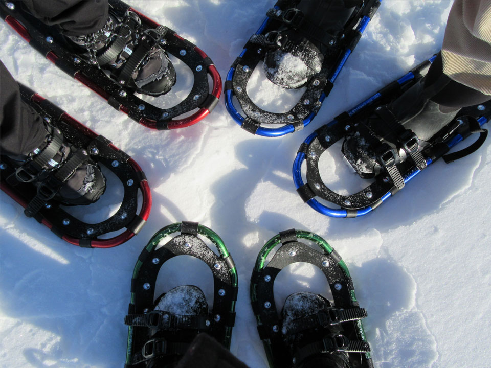 Taste of Winter: Lunchtime Snowshoe on Greenlink Trail