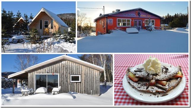 A Moosey Winter Getaway
