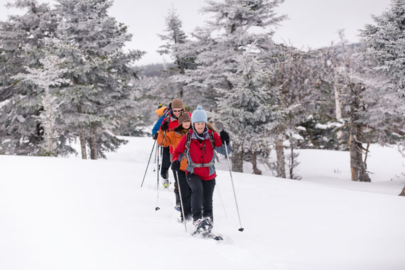 West Mabou Guided Moonlit Snowshoe/X-Country Ski Hike – Sunday's