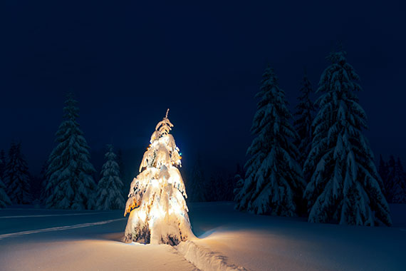 La Magie de l'hiver a la Rigoueche