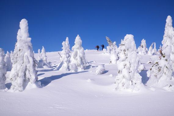 Winter Magic at La Rigoueche